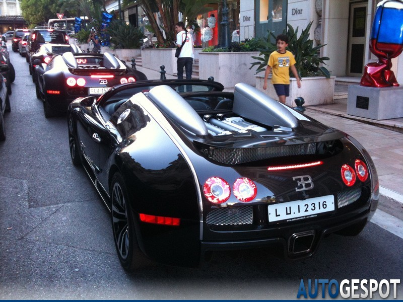 bugatti veyron 16 4 grand sport sk limited edition 15 august 2010 autogespot. Black Bedroom Furniture Sets. Home Design Ideas